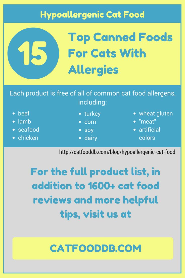 Hypoallergenic Cat Foods - 14 Top Canned Foods for Cats With Allergies