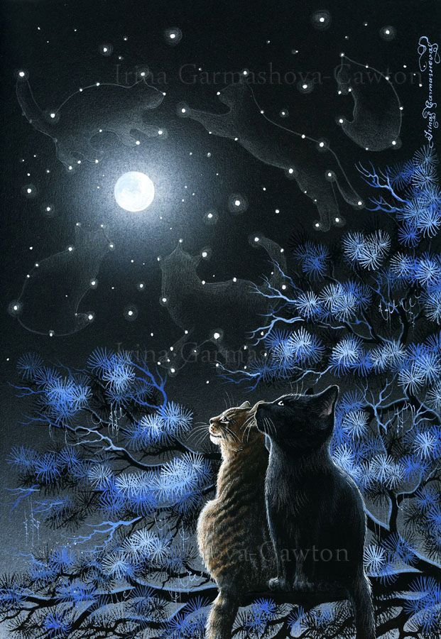 Magic Of The Night by Irina Garmashova-Cawton