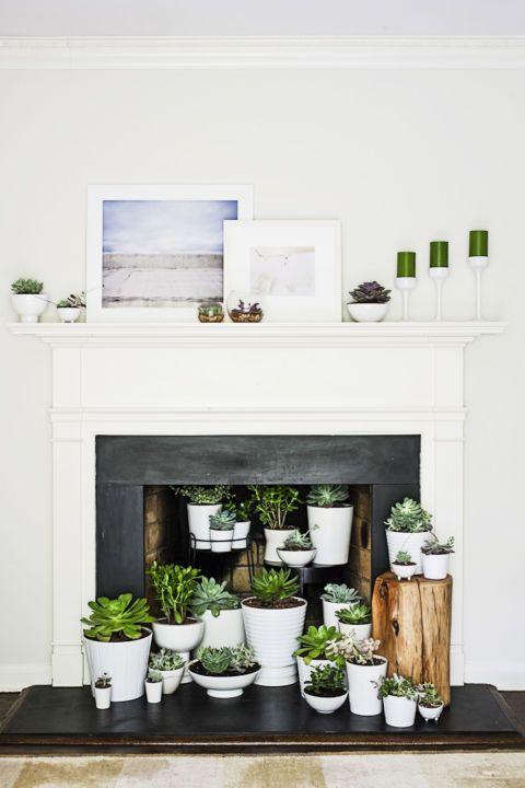 An empty hearth comes alive with an indoor garden. Arrange an array of mismatched pots, in many shapes and sizes, filled with hearty (and low-maintenance!) succulents or ferns.