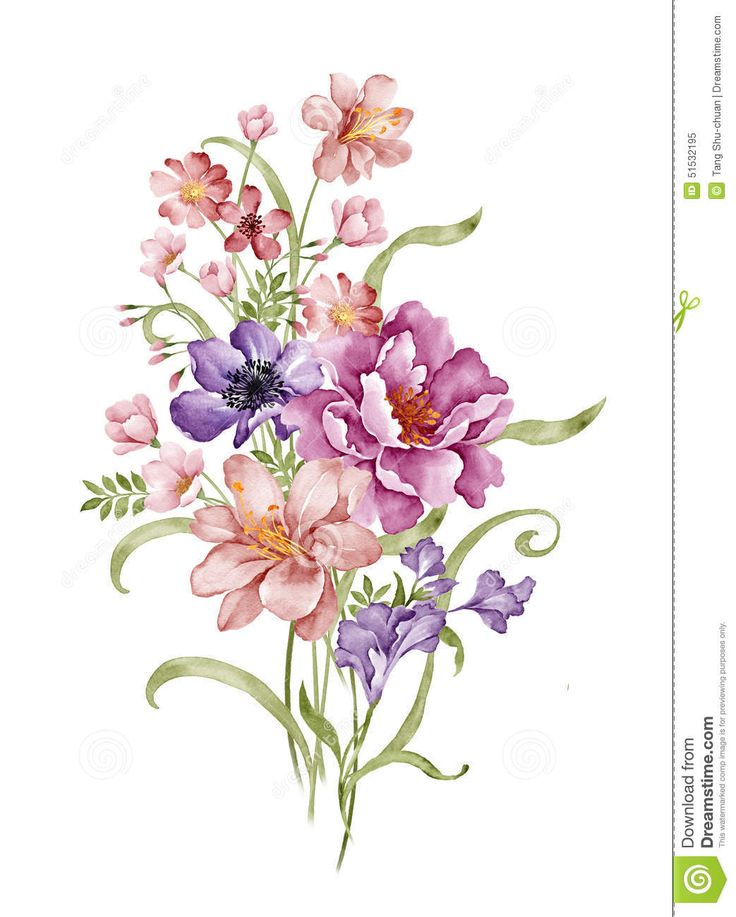 Watercolor Illustration - Download From Over 58 Million High Quality Stock Photos, Images, Vectors. Sign up for FREE today. Image: 51532195