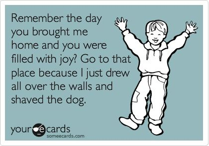 .: Laughing, Quotes, Happy Places, Funny Stuff, Funnies, Humor, Ecards, Things, Kids
