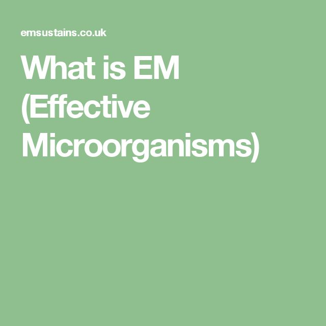 What is EM (Effective Microorganisms)