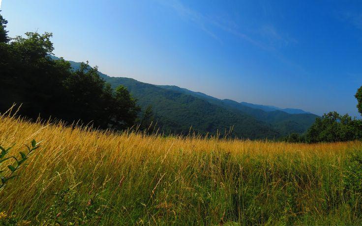 Panorama sulla valle Tanaro da Perlo