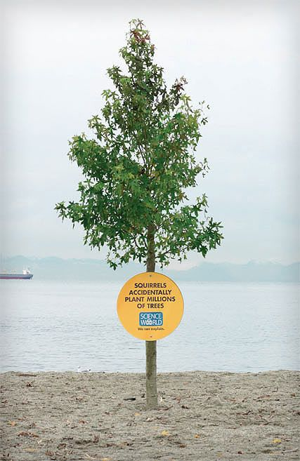 interesting science facts on billboards science world vancouver bc outdoor ooh ads rethink (22)