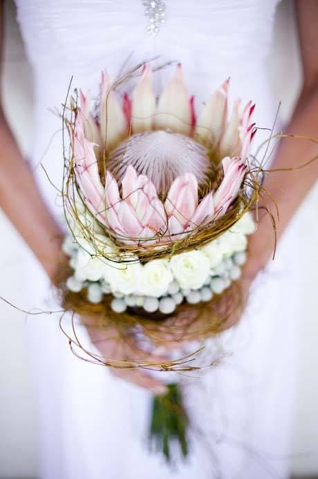 This single King Protea bouquet is so effective and beautiful. Bridal bouquets can be over the top and expensive- stick with simple & effective. #protea #bridal #bouquet #wedding