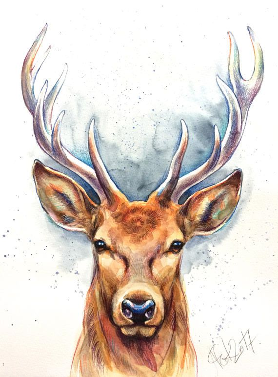 Original Hirsch Aquarell Bild Illustration Deer Art Stag