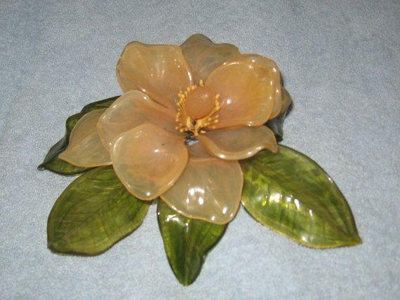 Lotus Corelli Net Worth