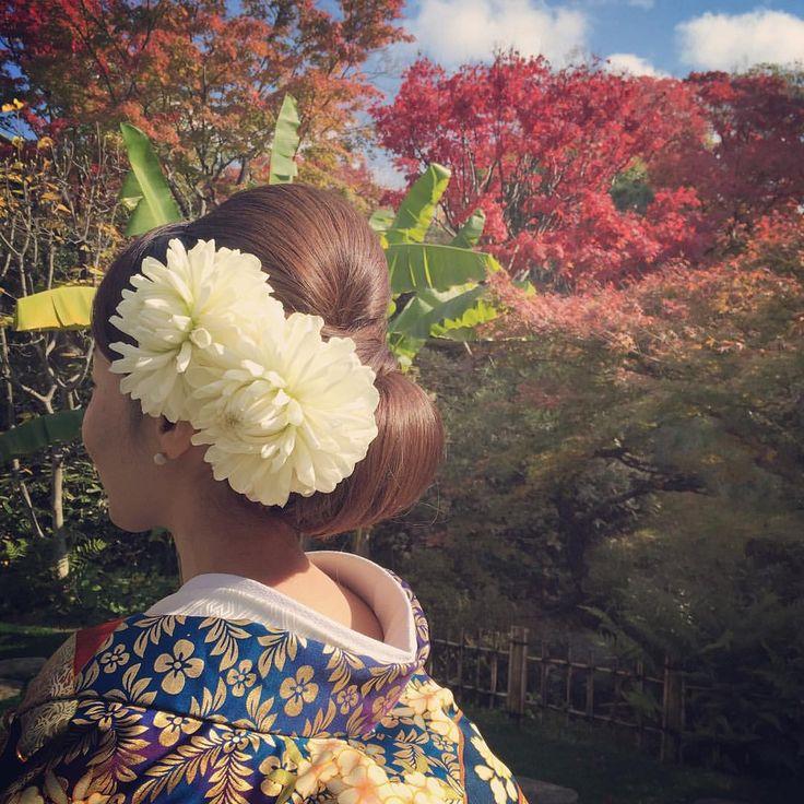 いいね!154件、コメント3件 ― Misa Niinobe l 新延 美紗さん(@misaco_1130)のInstagramアカウント: 「* **************** autumn leaves **************** * *…」
