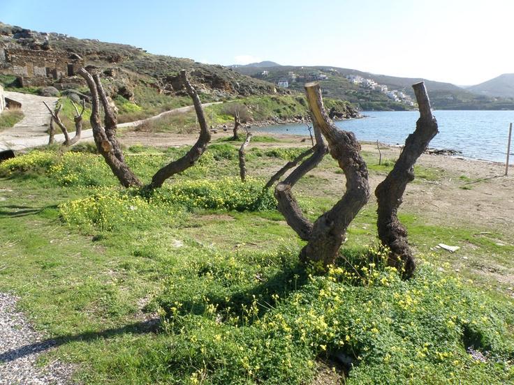 urban travel tales #springgreece #greekisland #keaisland