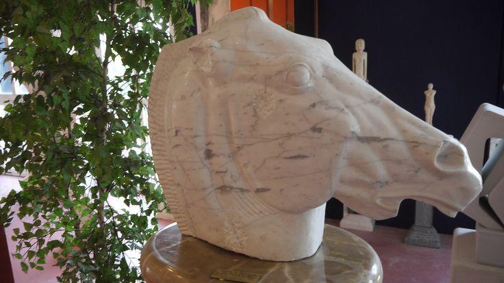 Scultura testa di cavallo del Partenone in marmo - http://www.achillegrassi.com/it/project/scultura-testa-di-cavallo-del-partenone-in-marmo/ - Splendido esempio di scultura,in Marmo di Carrara lucido, raffigurante la testa di cavallo del Partenone di Atene.  Dimensioni:  90cm x 65cm x 30cm