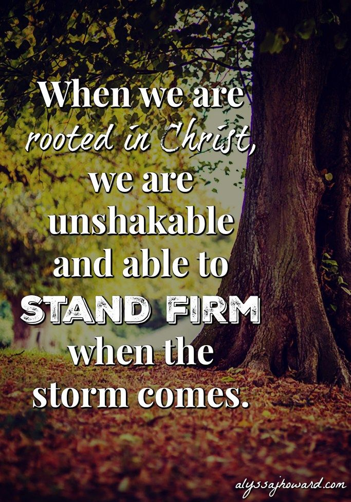 Is my root system strong enough to survive a storm? The reality is that storms will come. It's not a matter of if but when. And when faced with a storm, will I be able to stand firm? Will I be standing strong once the storm passes?
