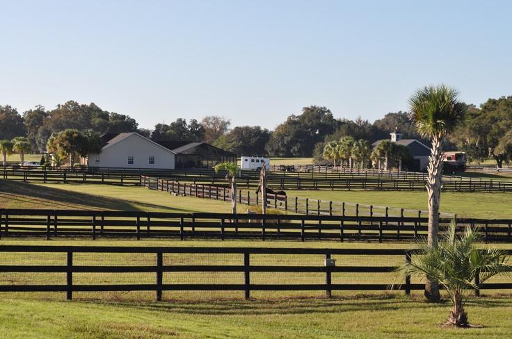 STATE FARM FLORIDA INSURANCE COMPANY - Florida Office of ...
