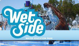 Free water park hervey bay!