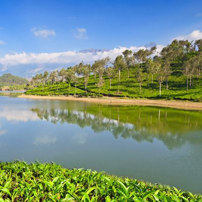 http://www.visiit.com/india-tours/kerala-tour-packages.html  kerala tour packages
