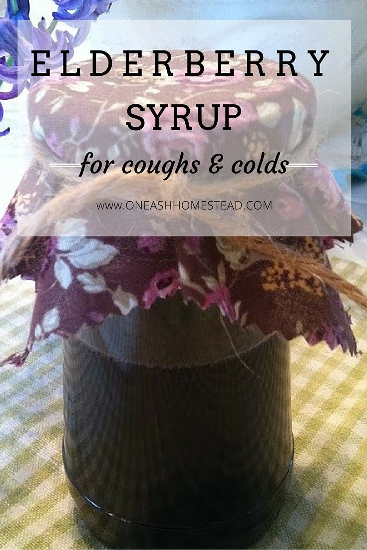Elderberry Syrup for coughs and colds (1)