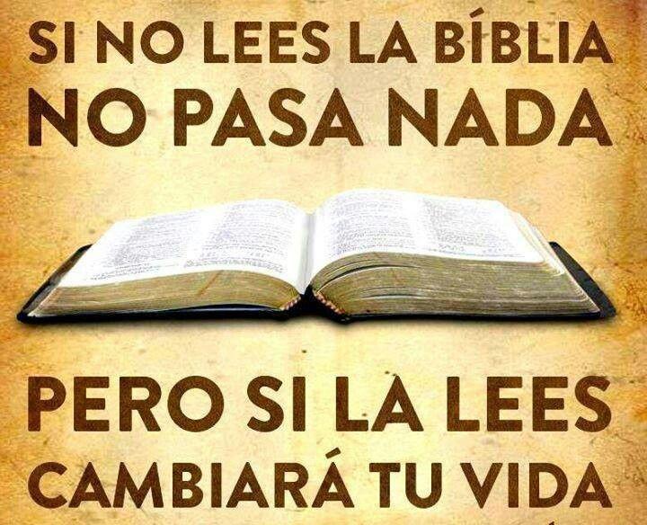 Lee La Biblia