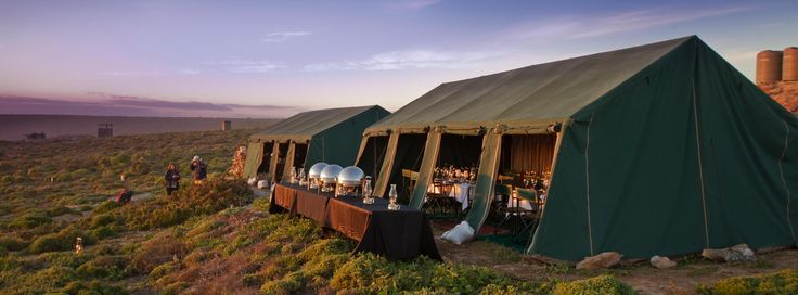 Namaqua Flower Beach Camp is located in the Namaqua National Park for a limited period over the peak flower season 14th August – 13th September.