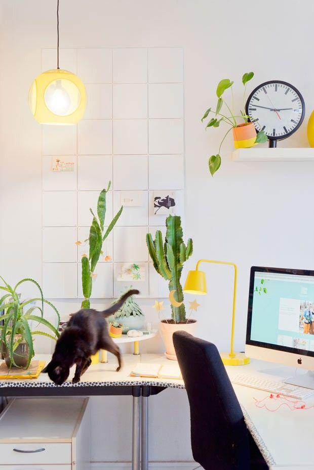 Para quem tem crianças e pets em casa é preciso atenção na hora de escolher quais plantinhas levar para casa, afinal algumas delas podem ser tóxicas (Foto: Judith de Graaff   JOELIX.com)
