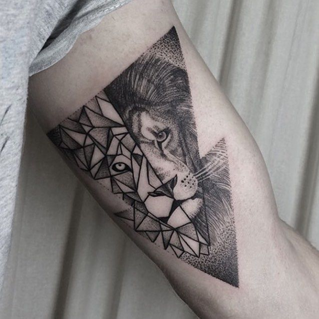 Love the geometric shape. Not necessarily the lion