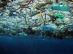 Want to see an ocean garbage patch in person?