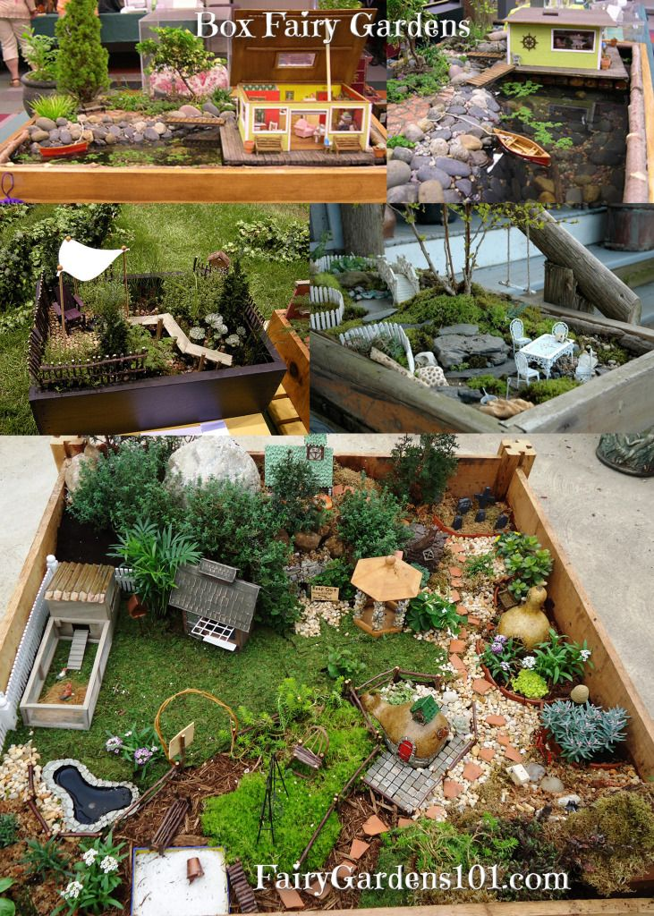 8229 best mini jardines y casitas images on pinterest for Fairy garden box ideas