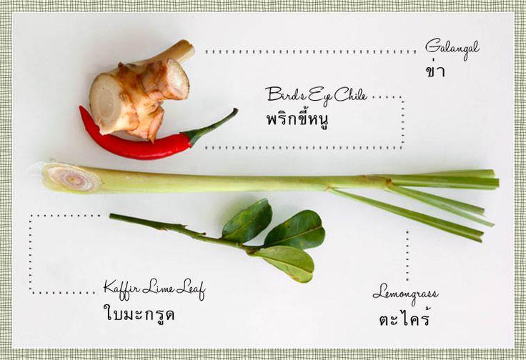 ... lime, cane syrup, Thai basil leaves, serrano, soda water, lemongrass