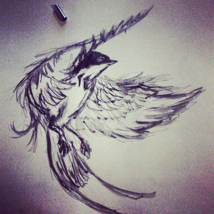 bird_sketch_by_marcellow1-d7ao5rv.jpg 894×894 pixels