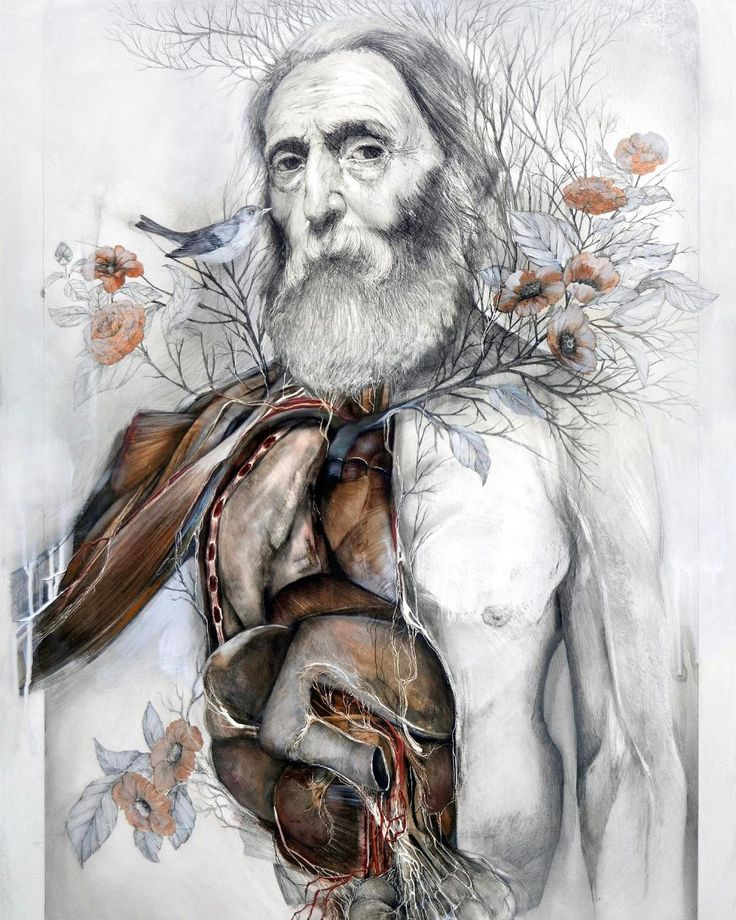 Nunzio Paci @nunziopaci an Italian artist combines the beauty of pencil drawing and oil painting to create surreal and weird yet certainly fascinating series of artwork. His approach to art is through the exploration of the relationship between man and nature. Among his brilliant creations is the series of human and animal paintings adorned with growing plants.  Итальянский художник Нунцио Пачи сочетает красоту рисунка карандашом и живописи маслом создавая сюрреалистические и странные но…