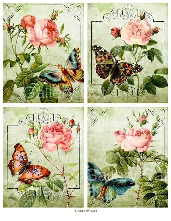 Flores e Borboletas …