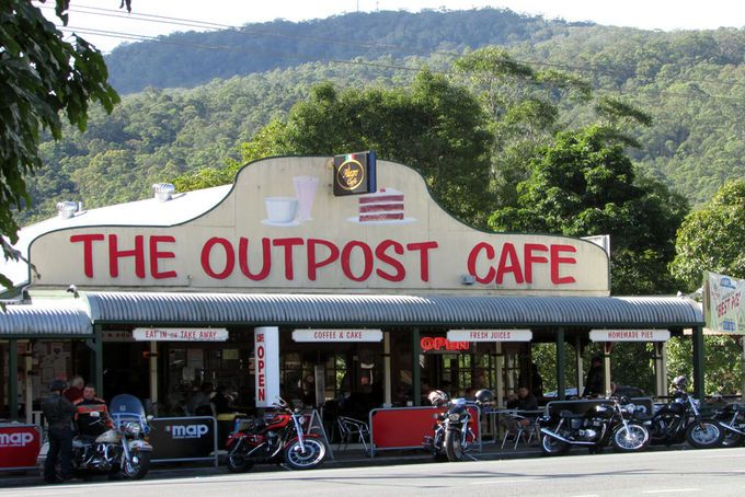 Day Tripping In Canungra | Must do Brisbane