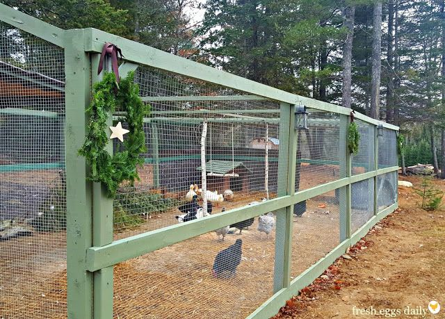 1000 Ideas About Building A Chicken Run On Pinterest