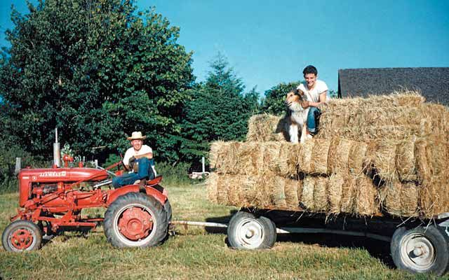 Learning an important life lesson about the value of farm life and a hard day's work. read the story @Elizabeth Lockhart Cassinos-magazine.com