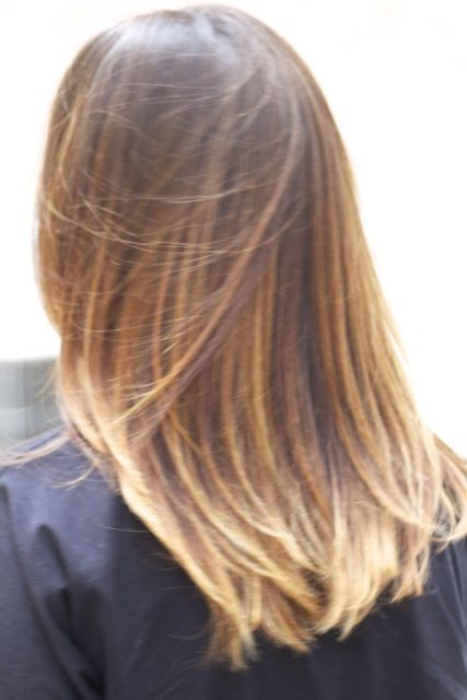Balayage, Golden Blond Highlights, Long, Straight, Brown, Layers