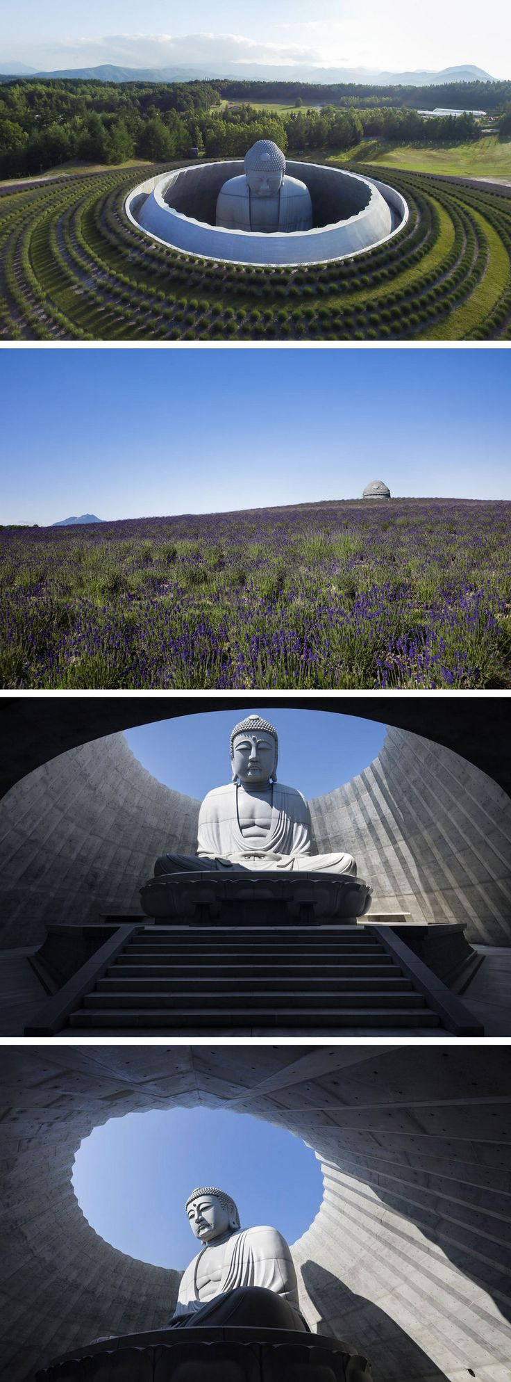 A Gigantic Buddha Sculptures Emerges from the Top of a Hill in Japan