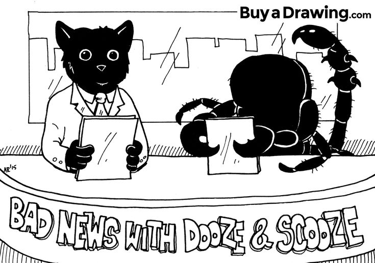 Another super fun odd request drawing! It's Bad News with Scooze and Dooze! (a cat and his scorpion Halloween costume). Read the full story at http://buyadrawing.com/cartoon-cat-and-scorpion-costume-drawing-bad-news-with-dooze-and-scooze/ #cartoon #cartoonist #illustrator #cat #pet #illustration #funny