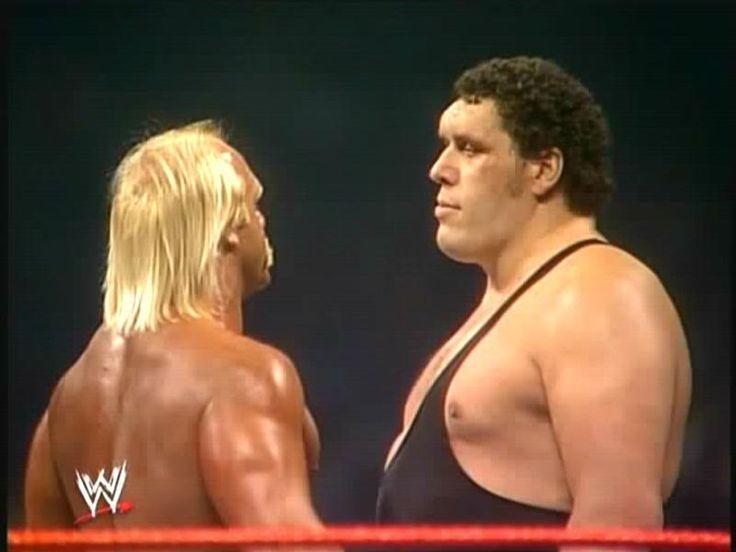 78 Best WWE WWF