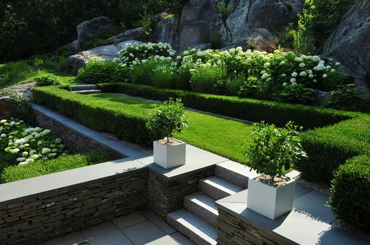 Beautiful Lines Brilliant Composition Of Garden And Photo