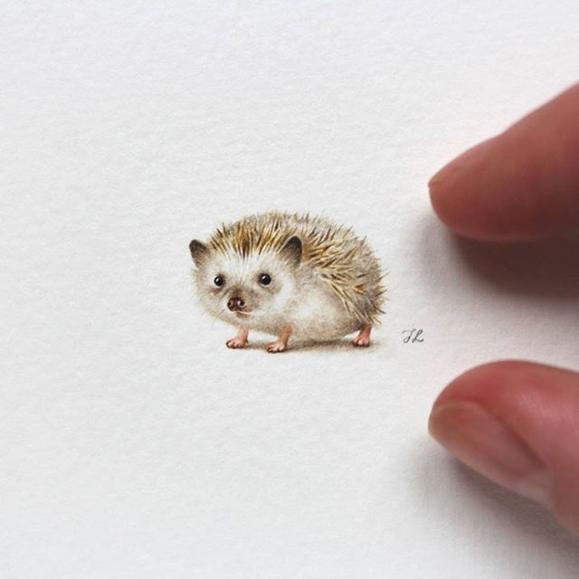 #hedgehog  Already at my #Etsy shop (link in bio). #watercolor #miniature #painting