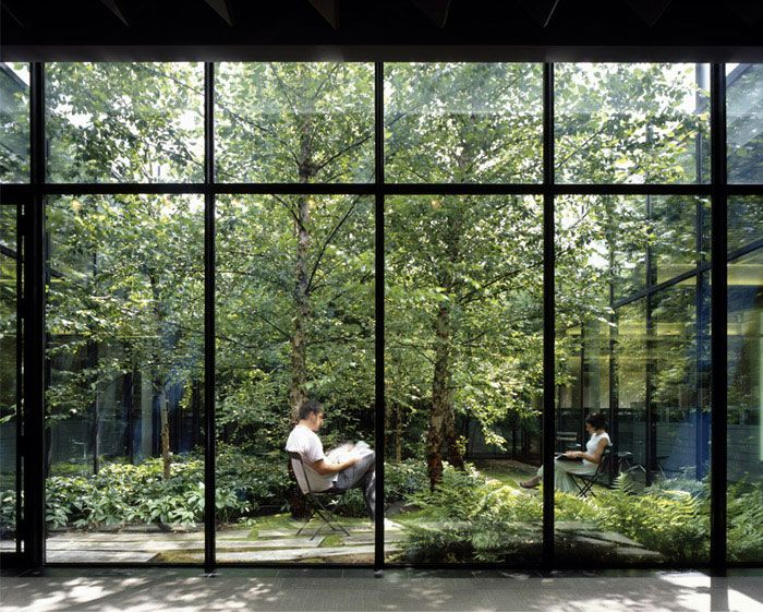 Work Spaces in New York City windowless work spaces landscape