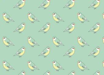 papier peint 'oiseaux bleu menthe' MIMI'lou | shop pour enfants Le Petit Zèbre