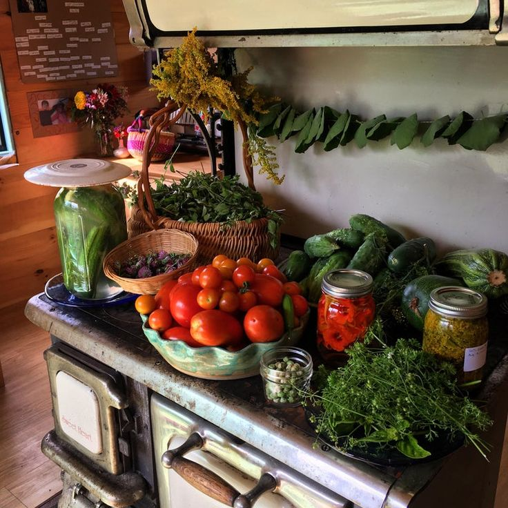 August still life homestead in 2020 growing sweet
