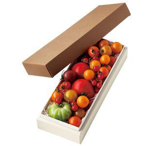 セレブ・デ・トマト彩りトマトの詰め合わせ