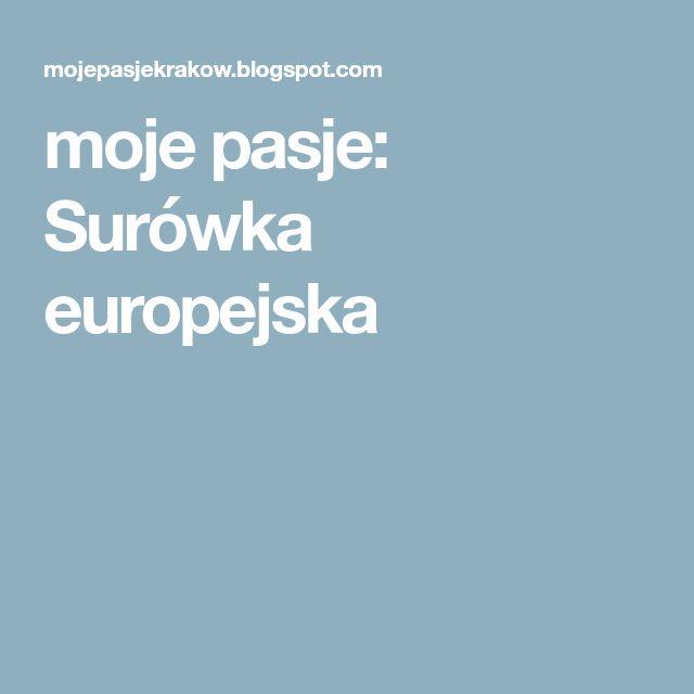 moje pasje: Surówka europejska
