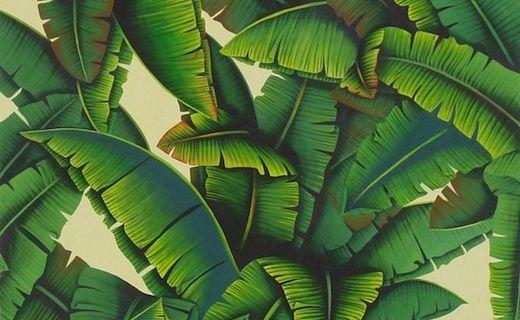 O trouver les plus beaux papiers peints motifs de feuilles et de palmes tableau v randa for Ou trouver des tuiles