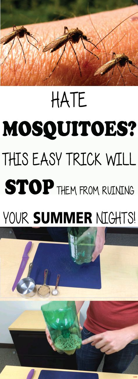 You trouble with sleeping because mosquitoes are biting you? You are looking for a way to get rid of them forever? Don't worry because there is a solutio