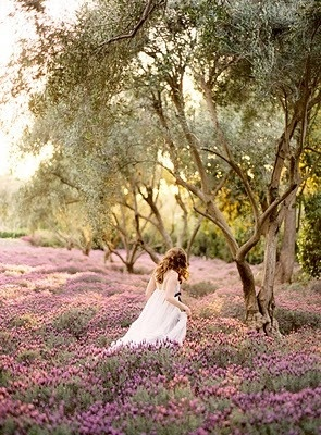 Ruby & Co. Blog: Oh, so pretty!Wedding Photography, Photos Ideas, Bridal Pictures, Inspiration, Dreams, Lavender Fields, Beautiful, Wedding Photos, Flower Fields
