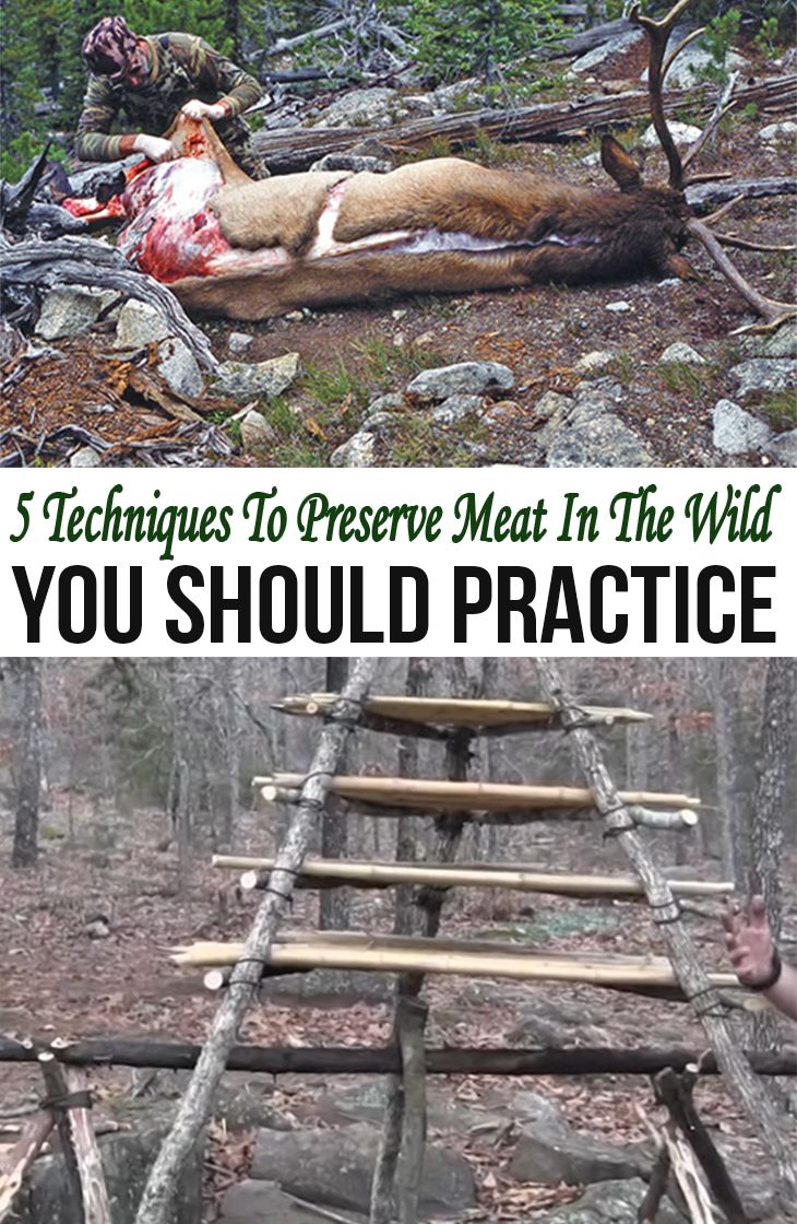 5 Techniques To Preserve Meat In The Wild You Should Practice — I'd like to remind you that while a preservation method or technique you use to keep your meat safe for days, or even weeks, it's ultimately pretty risky as you don't know just when the meat is attacked by bacterial (most attacks tend to have physical changes in the outlook of the meat though) and it is totally not suitable for consumption.