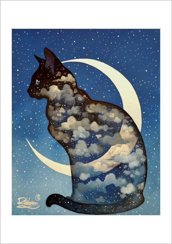 Cat Print Exploring The Constellations by I Garmashova