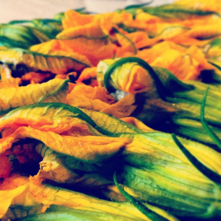 Freshly picked courgette flowers from my garden in Pisa. http://mozzarelladiaries.blogspot.it/