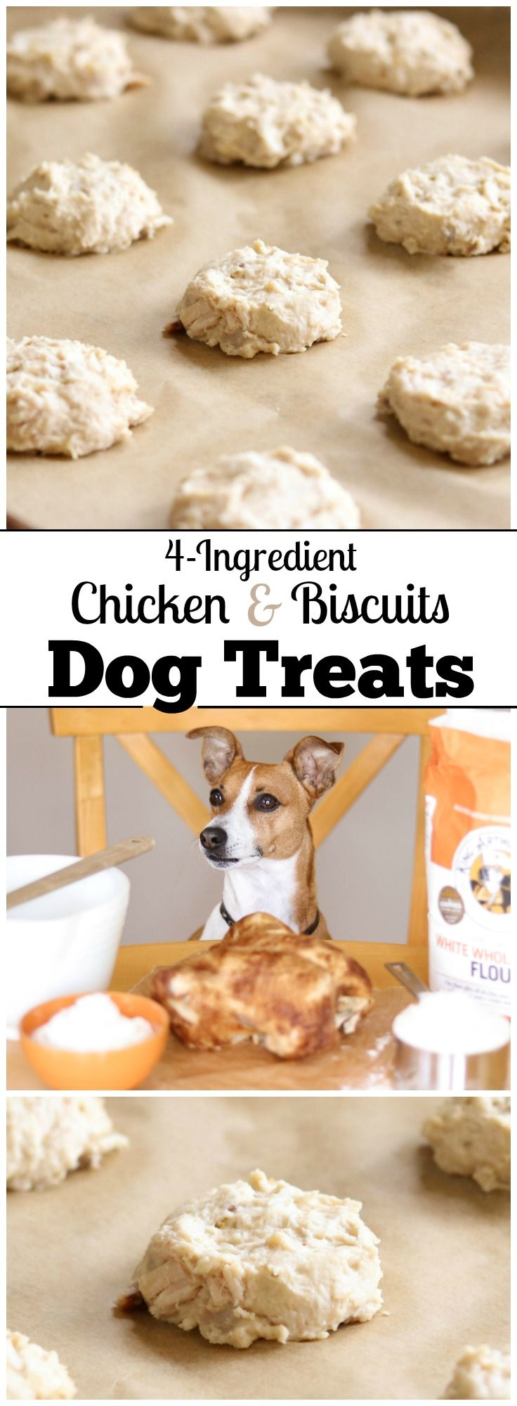 Perfect for using up leftover chicken! These easy Homemade Dog Treats are the doggy version of that classic comfort food, chicken and biscuits! Just store your leftover chicken in the freezer until you're ready to make these healthy dog treats. And there's no need to fuss with cookie cutters – these easy drop biscuits are so much faster! With just 4 ingredients, this dog treat recipe is ultra quick and easy, and these store beautifully in the freezer for weeks!   www.TwoHealthyKitchens.com